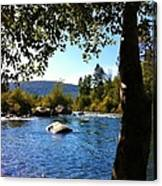 American River Through The Trees Canvas Print