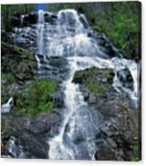amicalola falls Ga Canvas Print