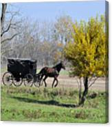 Amish Buggy Late Fall Canvas Print