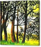 Arbutus Canvas Print