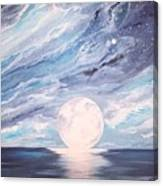 Arctic Sky Canvas Print