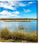 Arizona Riparian Preserve  #4 Canvas Print