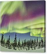 Aurora Borealis Over Churchill Canvas Print