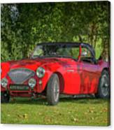 Austin Healey 100 Canvas Print