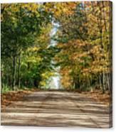 Autumn Backroad  Canvas Print