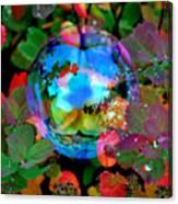 Autumn Bubble Canvas Print