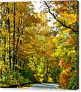 Autumn Drive No.2 Canvas Print