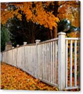 Autumn Fence Canvas Print