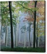 Autumn Frame Canvas Print