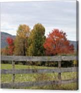 Autumn on Point Mountain Canvas Print