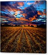 Autumn Rising Canvas Print