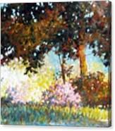 Azaleas Canvas Print