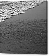 Beach Texture Canvas Print