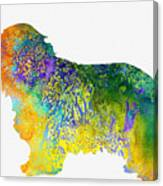 Bearder Collie-colorful Canvas Print