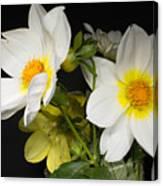 Beautiful Autumn White Flowers Canvas Print