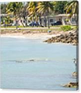 Beautiful Beach And Ocean Scenes In Florida Keys Canvas Print