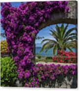 Beautiful Ischia Canvas Print