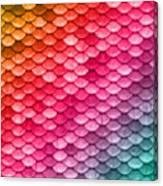 Beautiful Pastel Diagonal Rainbow Spectrum II Mermaid Fish Scales Canvas Print