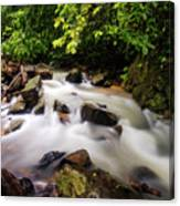 Beautiful Stream In Western Ghats Canvas Print