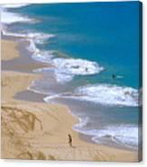Big Beach On Big Island Of Hawaii Canvas Print