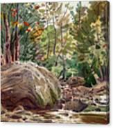 Big Rock At Sope Creek Canvas Print