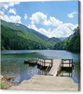 Biogradska Gora Forest  Canvas Print