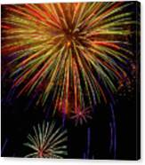 Blooming Fireworks Canvas Print
