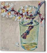 Blossoming Branch In A Glass Canvas Print