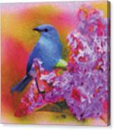 Blue Bird In The Lilac's Canvas Print