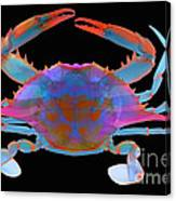 Blue Crab, X-ray Canvas Print