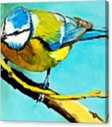 Blue On His Stick Canvas Print