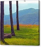 Blue Ridge Mountains - Virginia 2 Canvas Print