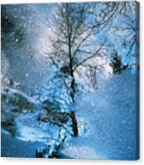 Blue Winter - From The Cycle - Straight From The Plate Canvas Print