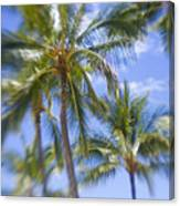 Blurry Palms Canvas Print