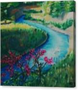 Bone Creek Canvas Print