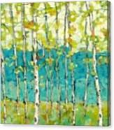 Bright Birches Canvas Print