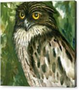 Brown Fish Owl  Canvas Print