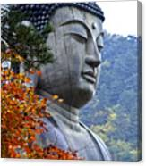 Buddha In Autumn Canvas Print