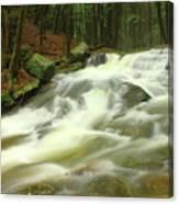 Buffam Brook Cascades Canvas Print