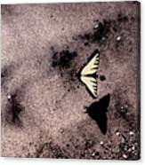 Butterfly And Sand Wc Canvas Print