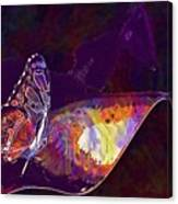Butterfly Wings Insect Nature  Canvas Print