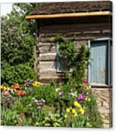 Cabin In The Spring Canvas Print