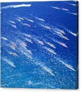 Canoe Race Canvas Print