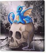 Captive Dragon On An Old Skull Canvas Print