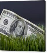 Cash In The Grass. Canvas Print