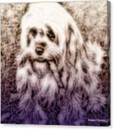 Cassie Girl Canvas Print