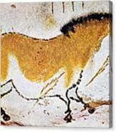 Cave Art: Lascaux Canvas Print
