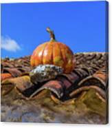 Ceramic Pumpkin On A Roof Canvas Print