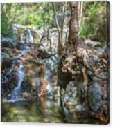 Chantara Waterfalls - Cyprus Canvas Print