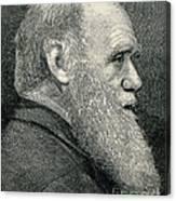 Charles Darwin, English Naturalist Canvas Print
